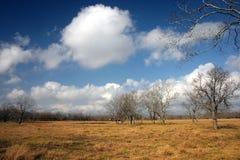 l'hiver de terres cultivables images libres de droits