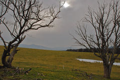 l'hiver de vent image stock