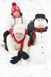 l'hiver de verticale Photo stock