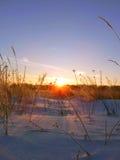 l'hiver de vue de l'Ukraine du soleil de montagne de moloda Photographie stock
