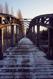 l'hiver de vue de l'Ukraine du soleil de montagne de moloda Photographie stock libre de droits