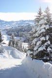 l'hiver de vue de route de montagne Photo libre de droits
