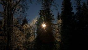 l'hiver de vue de l'Ukraine du soleil de montagne de moloda images stock