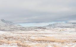 L'hiver Dovrefjell Images libres de droits