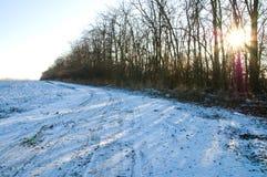 l'hiver du soleil Images stock