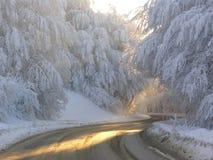 l'hiver du soleil Images libres de droits