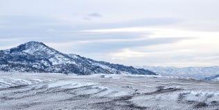 L'hiver du Wyoming Images libres de droits