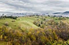 L'hiver embrasse l'automne Photographie stock libre de droits