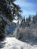 L'hiver en Autriche Photos libres de droits