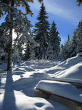 L'hiver en Autriche photographie stock libre de droits