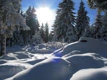 L'hiver en Autriche Images libres de droits
