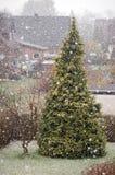 L'hiver en avril Image libre de droits
