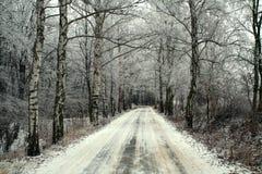 L'hiver en bois de route Photographie stock libre de droits