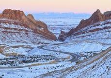 L'hiver en canyon repéré de loup Photos stock