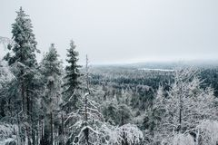 L'hiver en Finlande images libres de droits