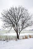 L'hiver en Hollande Images stock