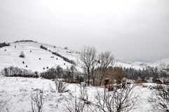 L'hiver en montagnes carpathiennes Photo libre de droits