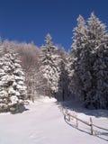 L'hiver en montagnes de Ciucas photos stock