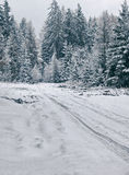 L'hiver en Pologne Images stock