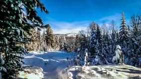 L'hiver en Russie photos libres de droits