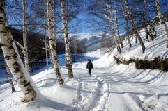 L'hiver en stationnement Images libres de droits
