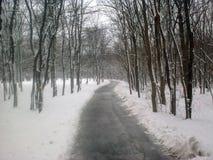 L'hiver en stationnement Photos libres de droits