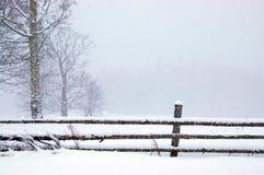 L'hiver en stationnement Photographie stock