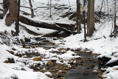 L'hiver en stationnement de Rock Creek Photo libre de droits