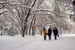L'hiver en stationnement de ville Photos libres de droits