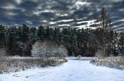 L'hiver est venu Photos libres de droits