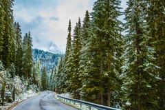L'hiver est venu Image libre de droits