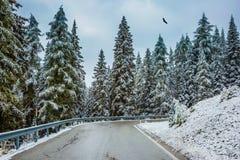 L'hiver est venu Photos stock