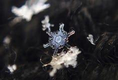 L'hiver Flocons de neige - belle glace de dentelle photos stock