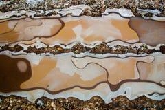 l'hiver gelé de scène de sable de route de regroupement de boue Image stock