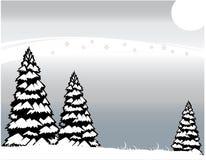 L'hiver givré Photo stock
