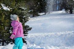 L'hiver heureux Photos libres de droits