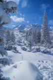 L'hiver idyllique Images libres de droits