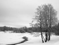 L'hiver. Le fleuve de l'hiver. Photos libres de droits