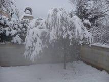 L'hiver le plus agréable Photographie stock libre de droits