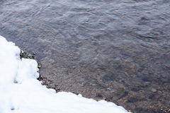 L'hiver les déchirent Photo libre de droits