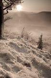 l'hiver monochrome de coucher du soleil Images libres de droits