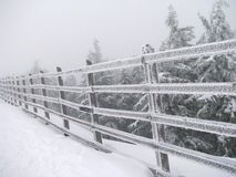 L'hiver pâlissant dans la montagne Images libres de droits