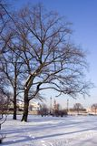 L'hiver Pétersbourg en jour ensoleillé Images libres de droits