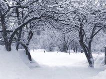 L'hiver passage arqué photos stock