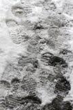 L'hiver Promenade de personnes sur un trottoir très neigeux Étape de personnes sur une voie neige-égarée Trottoir glacial Glace s images stock