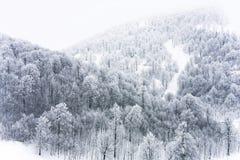 l'hiver rêveur image stock