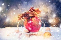 L'hiver rouge Apple s'embranchent cannelle de bâtons Anise Small Sledge photo stock
