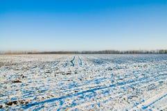 L'hiver rural Photos stock