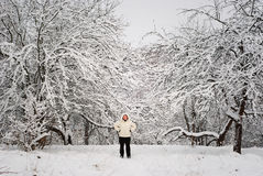 L'hiver russe Photographie stock