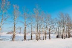 L'hiver russe Photos libres de droits